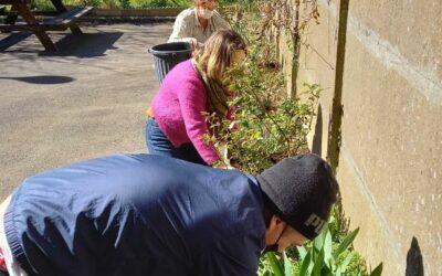 A Cleunay, les vendredis c'est jardinage avec les voisins…