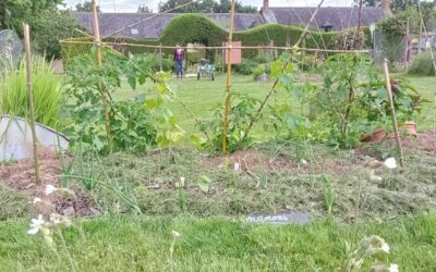 Un jardin des possibles…